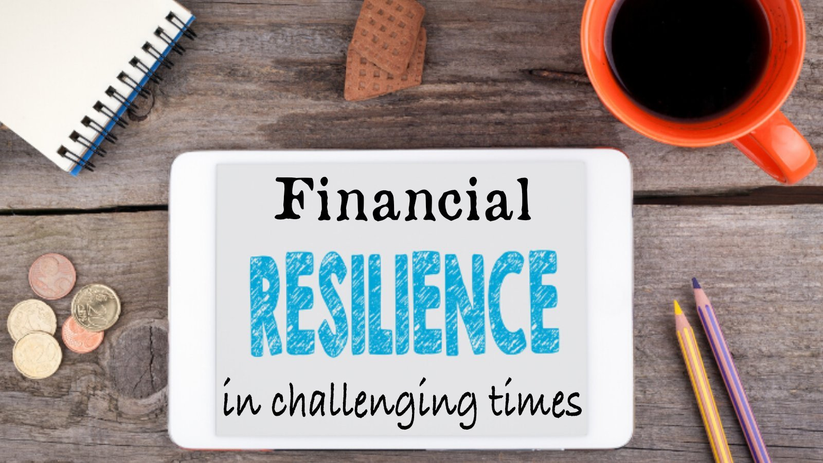 Financial Resilience in Difficult Times